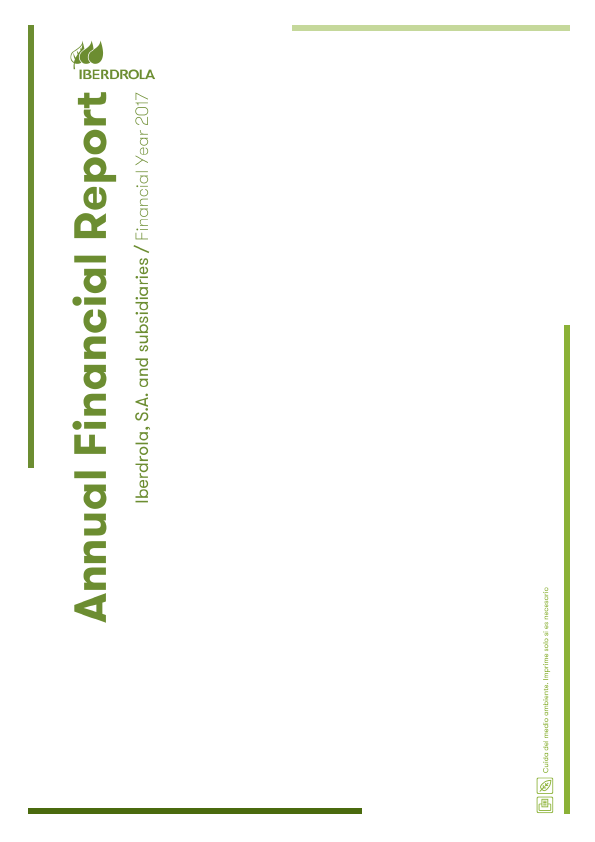Iberdrola   annual report