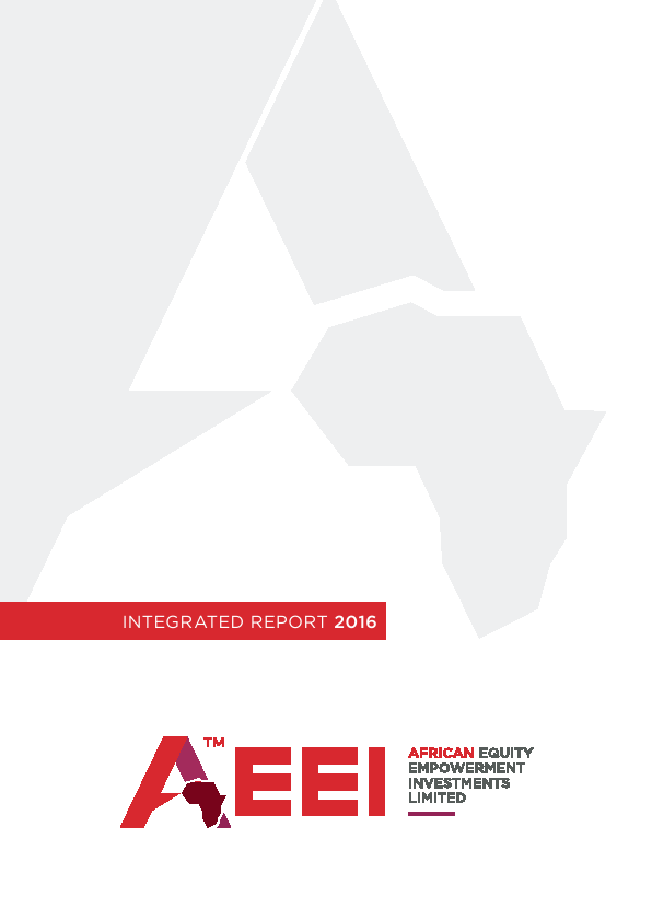 African Equity Empowerment Investments   annual report