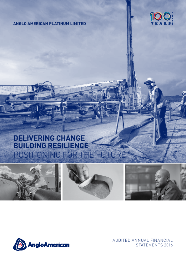 Anglo American Platinium   annual report