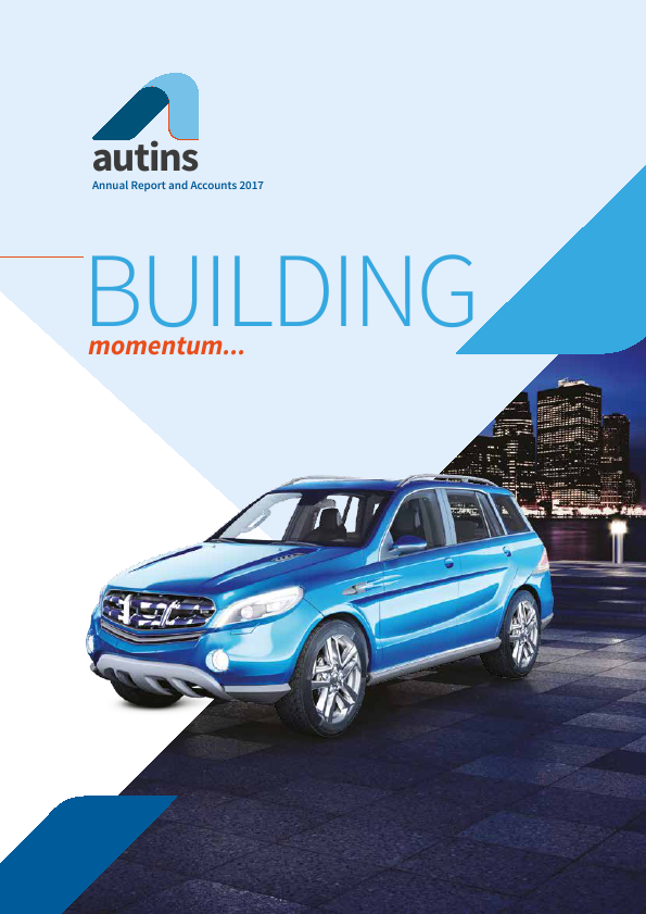 Autins Group   annual report