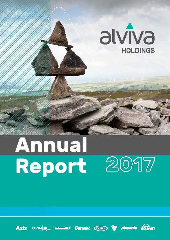 Alviva Holdings   annual report