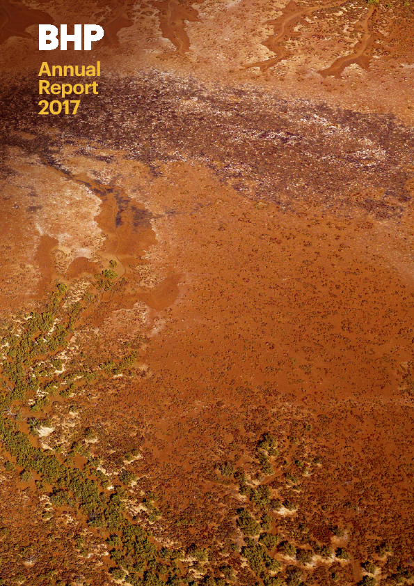 BHP Billiton Plc   annual report