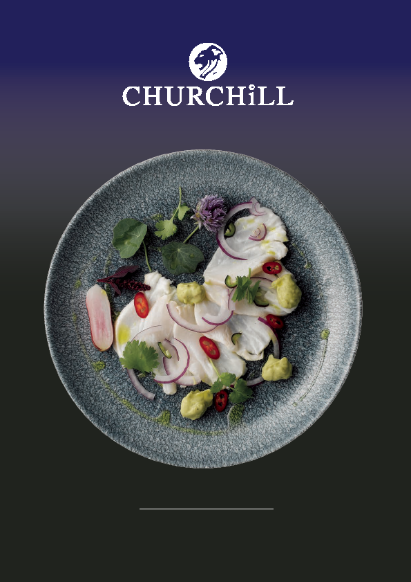 Churchill China   annual report