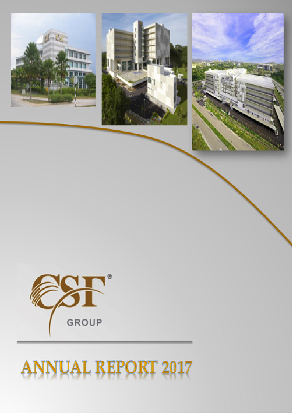 Csf Group Plc   annual report