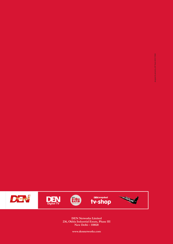 Den Networks   annual report