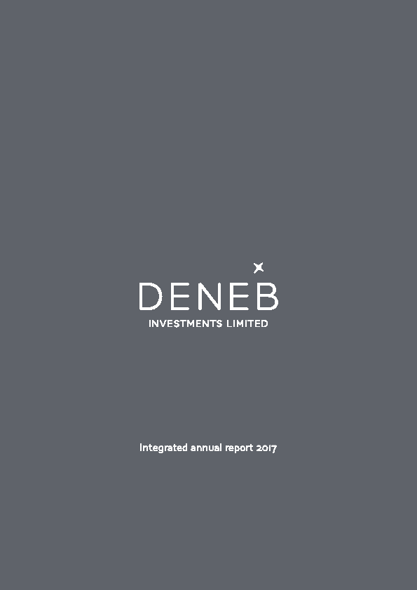 Deneb Investments   annual report