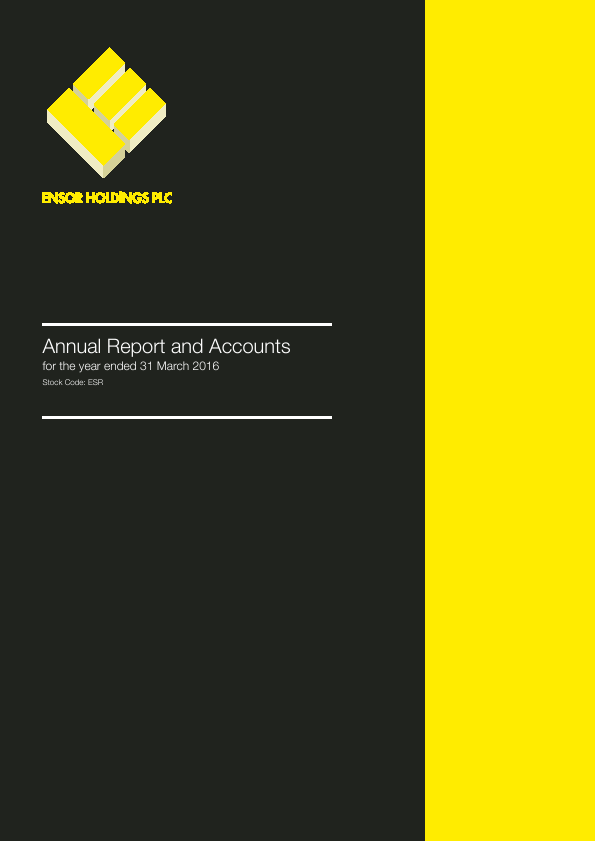 Ensor Holdings   annual report