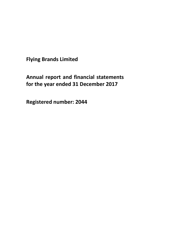 Flying Brands   annual report