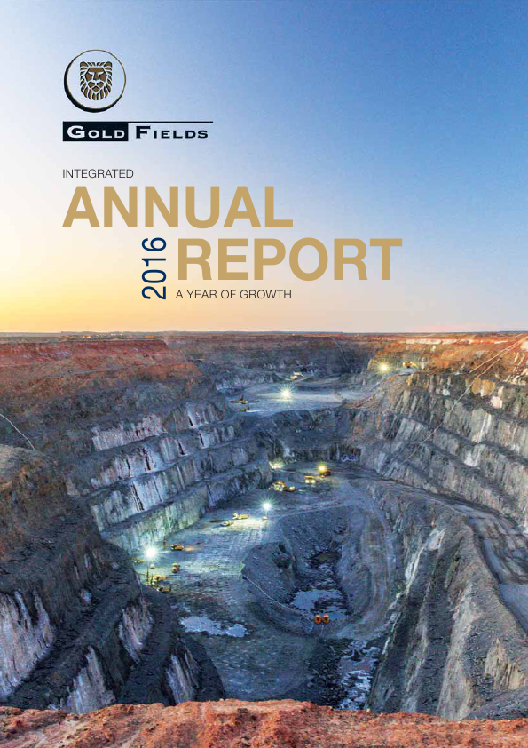 Gold Fields   annual report