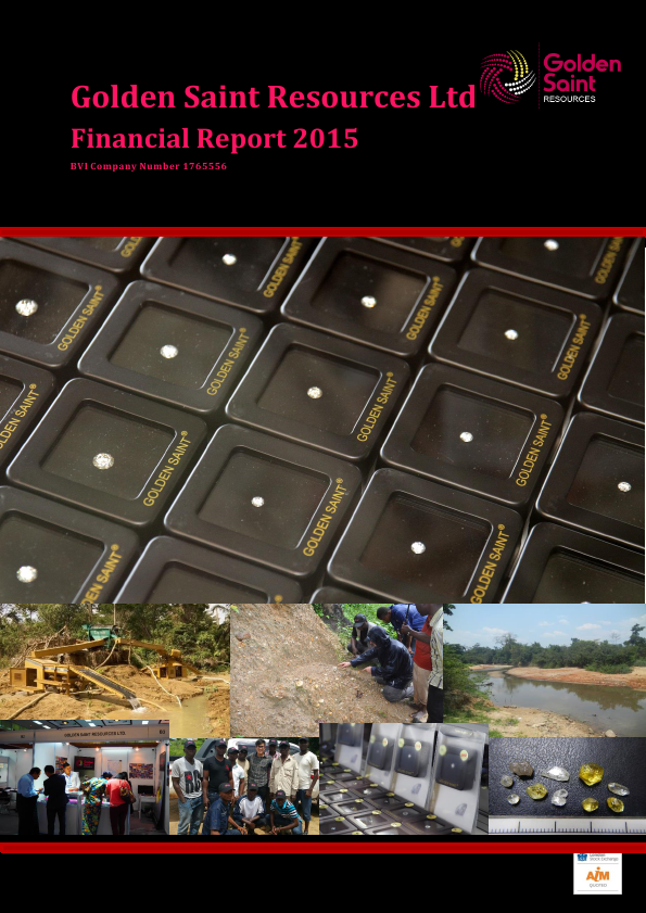 Golden Saint Resources   annual report