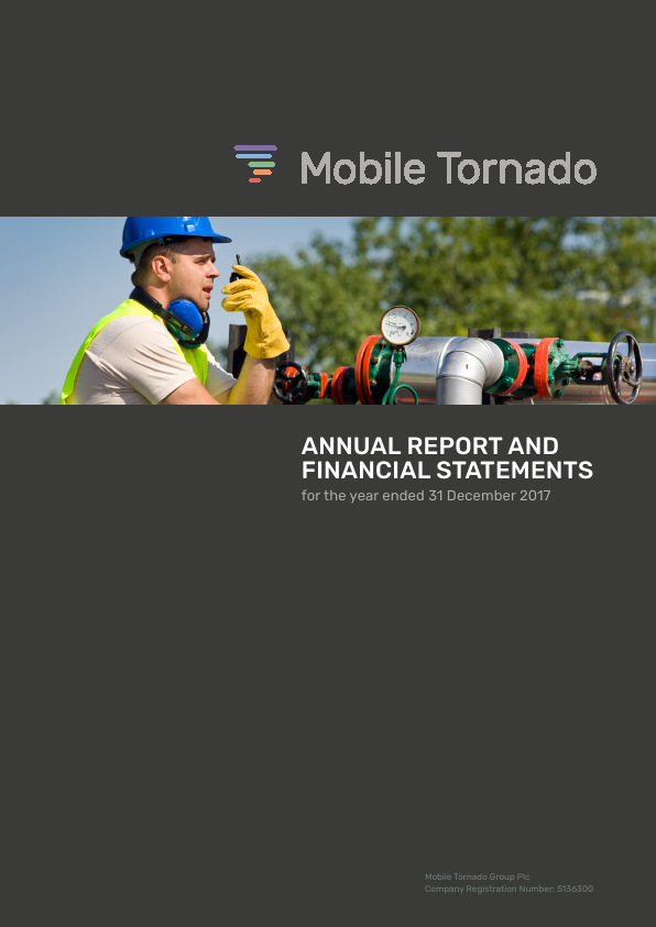 Mobile Tornado Group   annual report