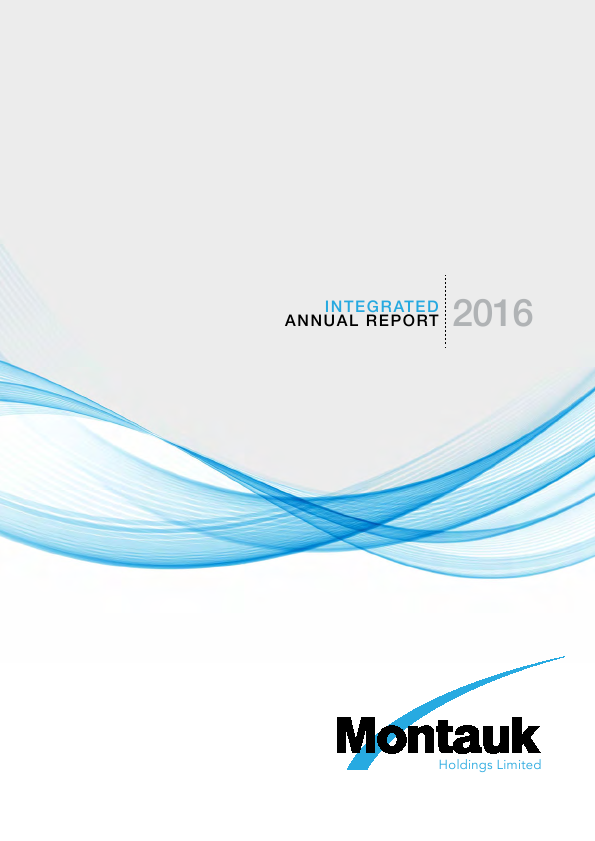 Montauk Holdings   annual report