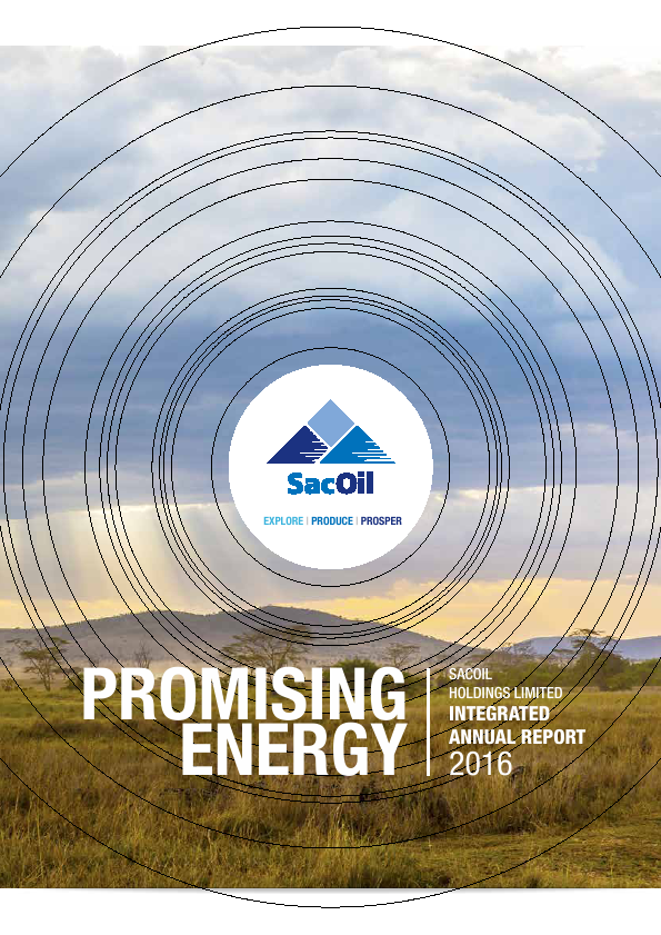 Sacoil Holdings   annual report