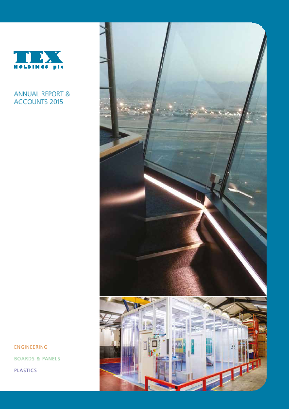 Tex Holdings   annual report
