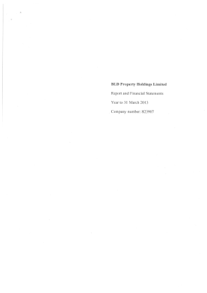 BLD Property Holdings annual report 2013