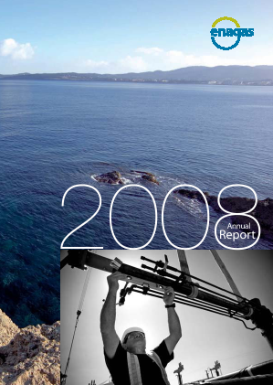 Enagas annual report 2008