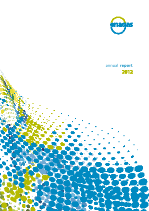 Enagas annual report 2012