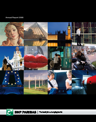 BNP Paribas annual report 2008
