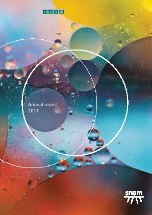 SNAM annual report 2017