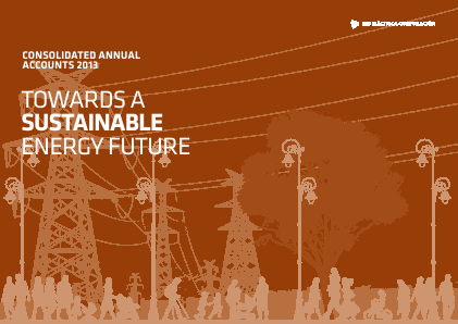 Red Electrica annual report 2013
