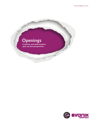 Evonik Industries annual report 2012