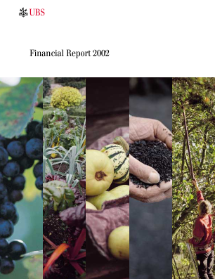 UBS Group annual report 2002