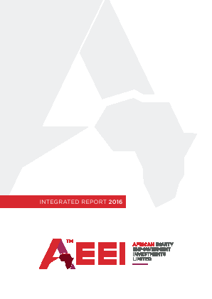 African Equity Empowerment Investments annual report 2016