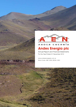 Andes Energia Plc annual report 2012