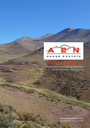 Phoenix Global Resources (previously Andes Energia) annual report 2014