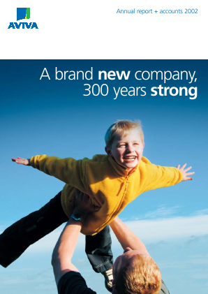 Aviva annual report 2002