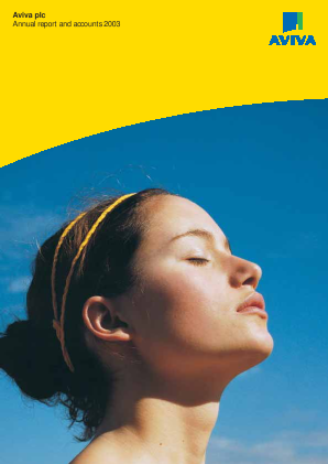Aviva annual report 2003