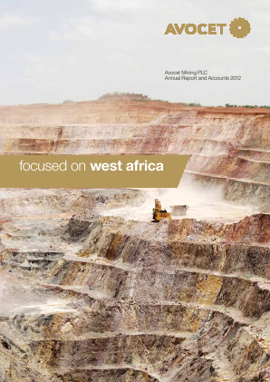 Avocet Mining annual report 2012