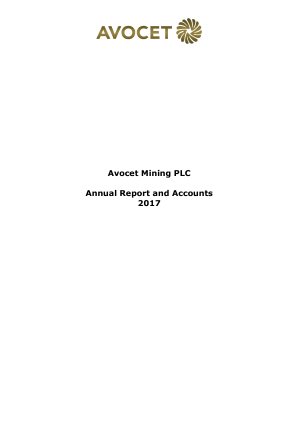 Avocet Mining annual report 2017