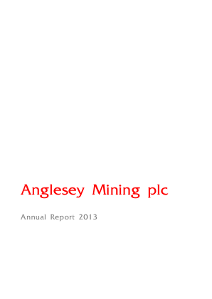 Anglesey Mining annual report 2013