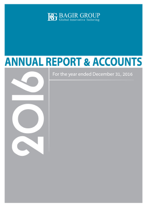 Bagir Group annual report 2016