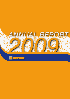 BGEO Group(Bank Of Georgia) annual report 2009