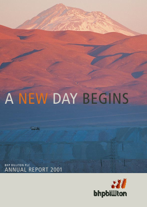 BHP Billiton Plc annual report 2001