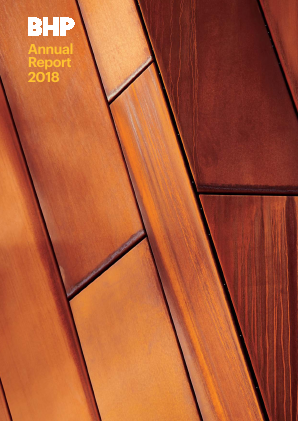 BHP Billiton Plc annual report 2018
