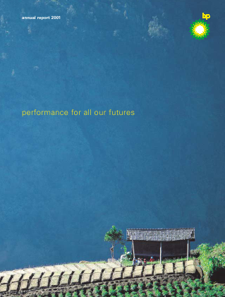 BP annual report 2001