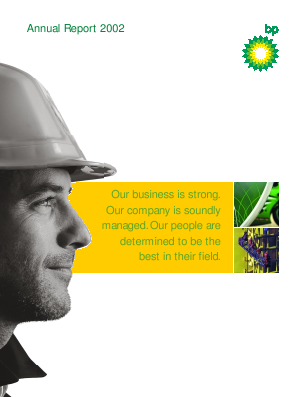 BP annual report 2002