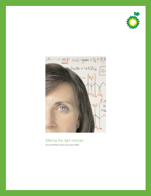 BP annual report 2004