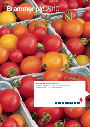 Brammer annual report 2010