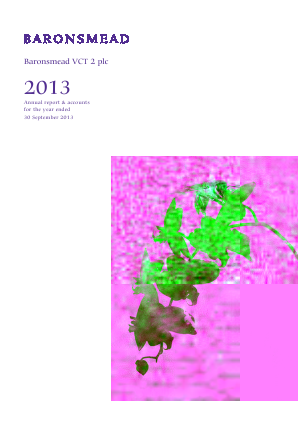 Baronsmead Venture Trust (Previously VCT 2) annual report 2013