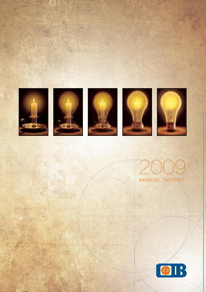 Commercial Intl Bank(Egypt) SAE annual report 2009