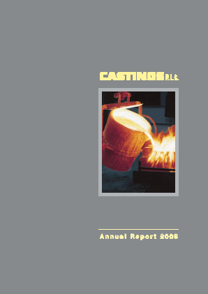 Castings annual report 2008