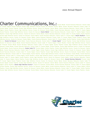 Charter Communications, Inc. annual report 2002