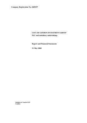 City Of London Investment Group annual report 2004