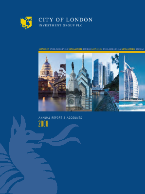 City Of London Investment Group annual report 2008