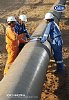 Cairn Energy Plc annual report 2008