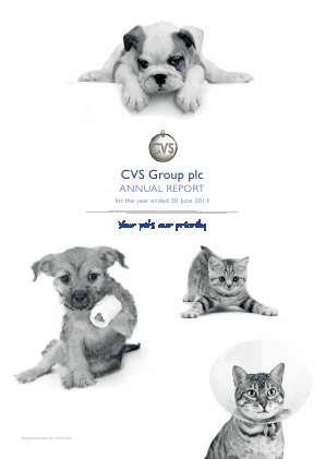 Cvs Group Plc annual report 2013